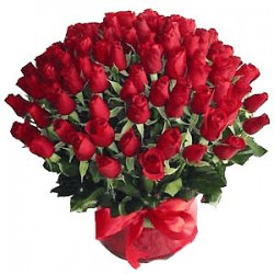 100-rosses-kiss-red-flower-at-living-gifts